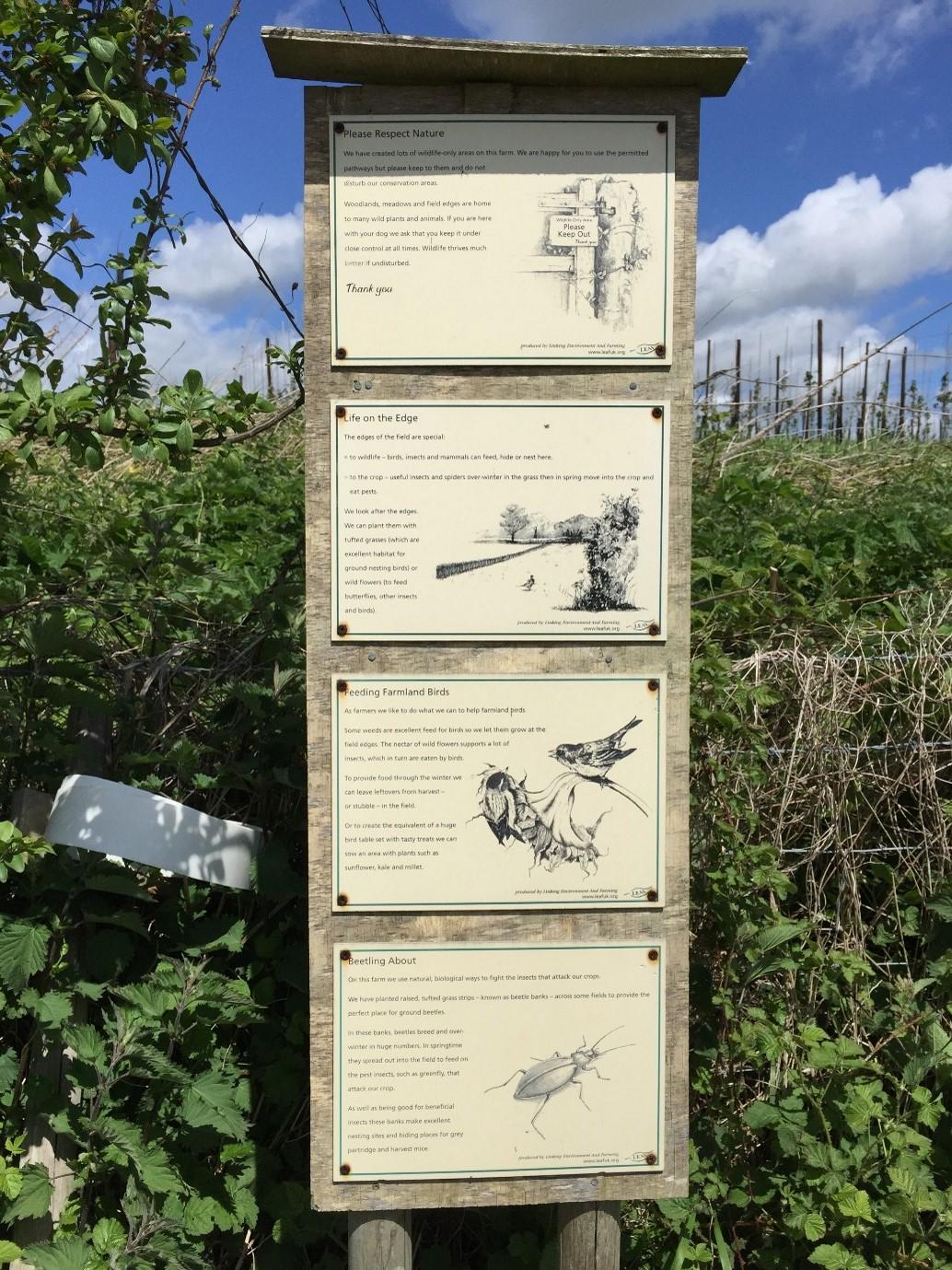 wildlife sign in woodlands showing bird and bug species